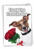 Hysterical Thank You Card From NobleWorksInc.com - Thank You from the Dog