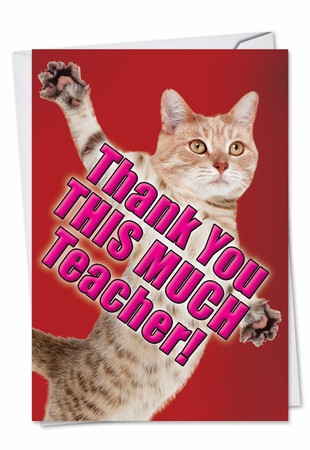 Hysterical Teacher Thank You Card From NobleWorksInc.com - Thank You This Much Teacher-Cat