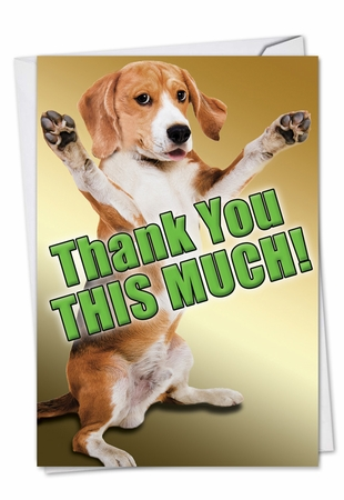 Hysterical Thank You Card From NobleWorksInc.com - This Much Dog