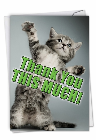 Hilarious Thank You Card From NobleWorksInc.com - This Much Kitten