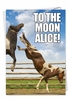 Humorous Birthday Card From NobleWorksInc.com - To The Moon