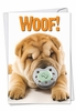 Funny Birthday Card From NobleWorksInc.com - Woof