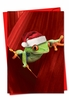 Beautiful Christmas Card From NobleWorksInc.com - Yule Frogs
