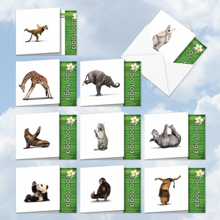 Artful All Occasions Assorted Cards From NobleWorksInc.com - Zoo Yoga