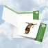 Beautiful Blank Square-Top Card From NobleWorksInc.com - Zoo Yoga - Lion