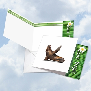 Beautiful Blank Square-Top Card From NobleWorksInc.com - Zoo Yoga - Seal