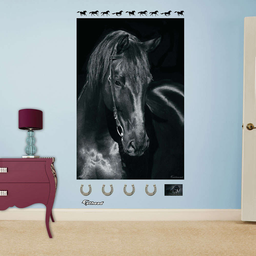 Black horse mural realbig wall decal for Equestrian wall mural