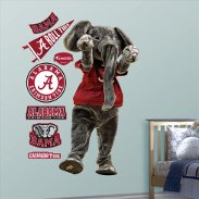 College Sports Decorations & Party Supplies
