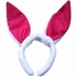 Easter Accessories & Bunny Ears Headband