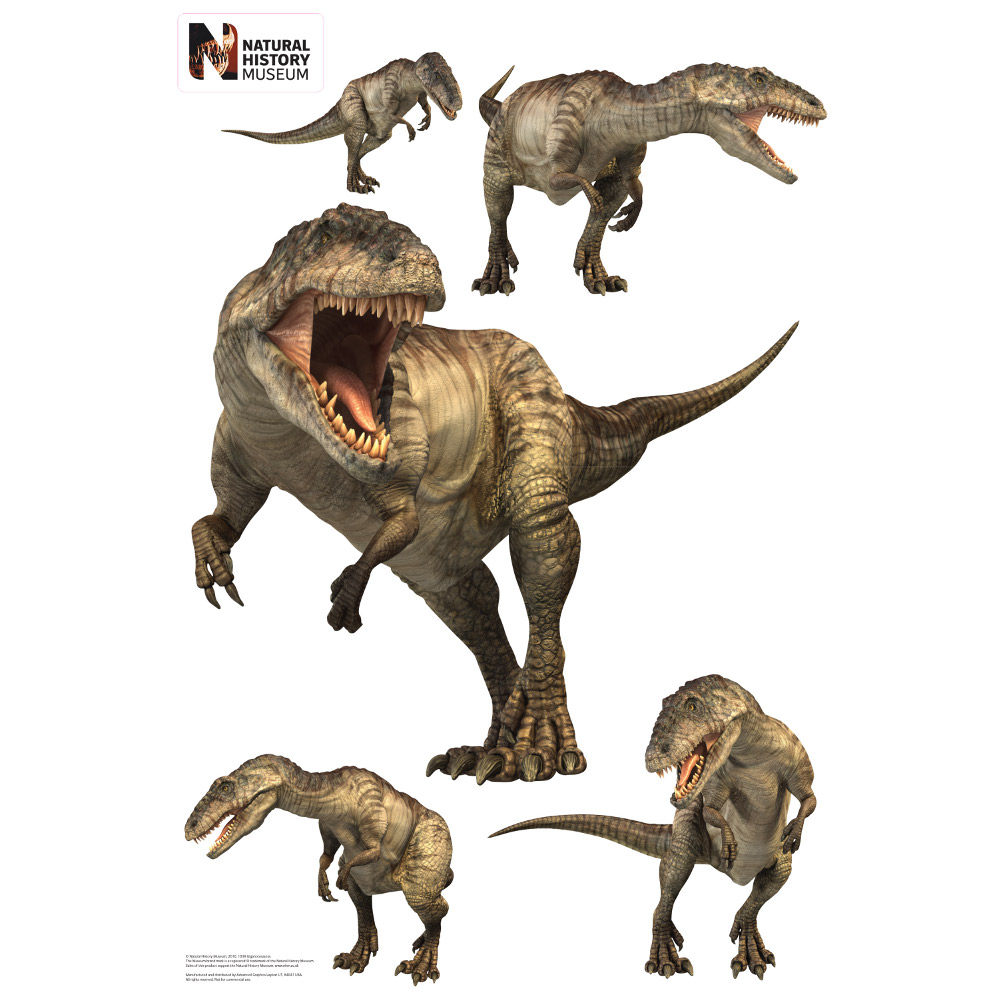 Giganotosaurus Layout Wall Decor