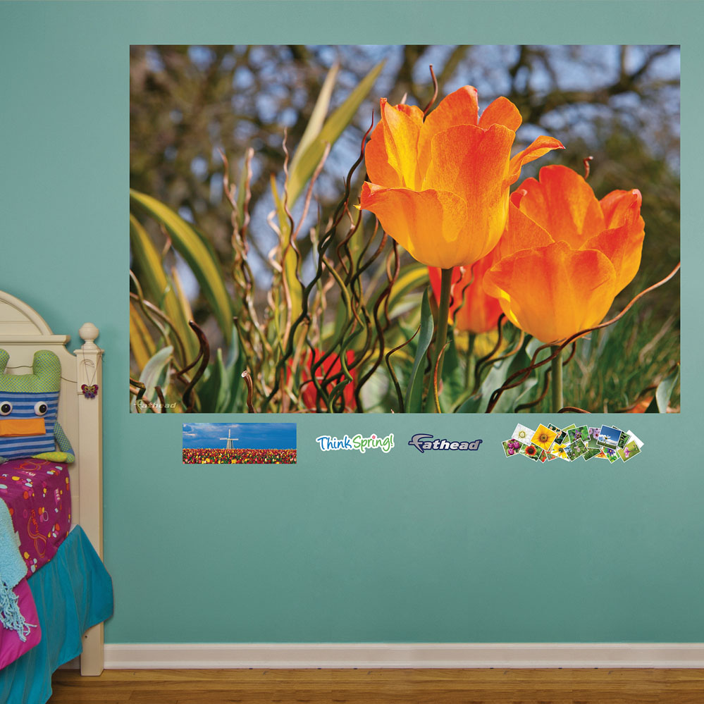 Golden Tulips Closeup Mural REALBIG Wall Decal