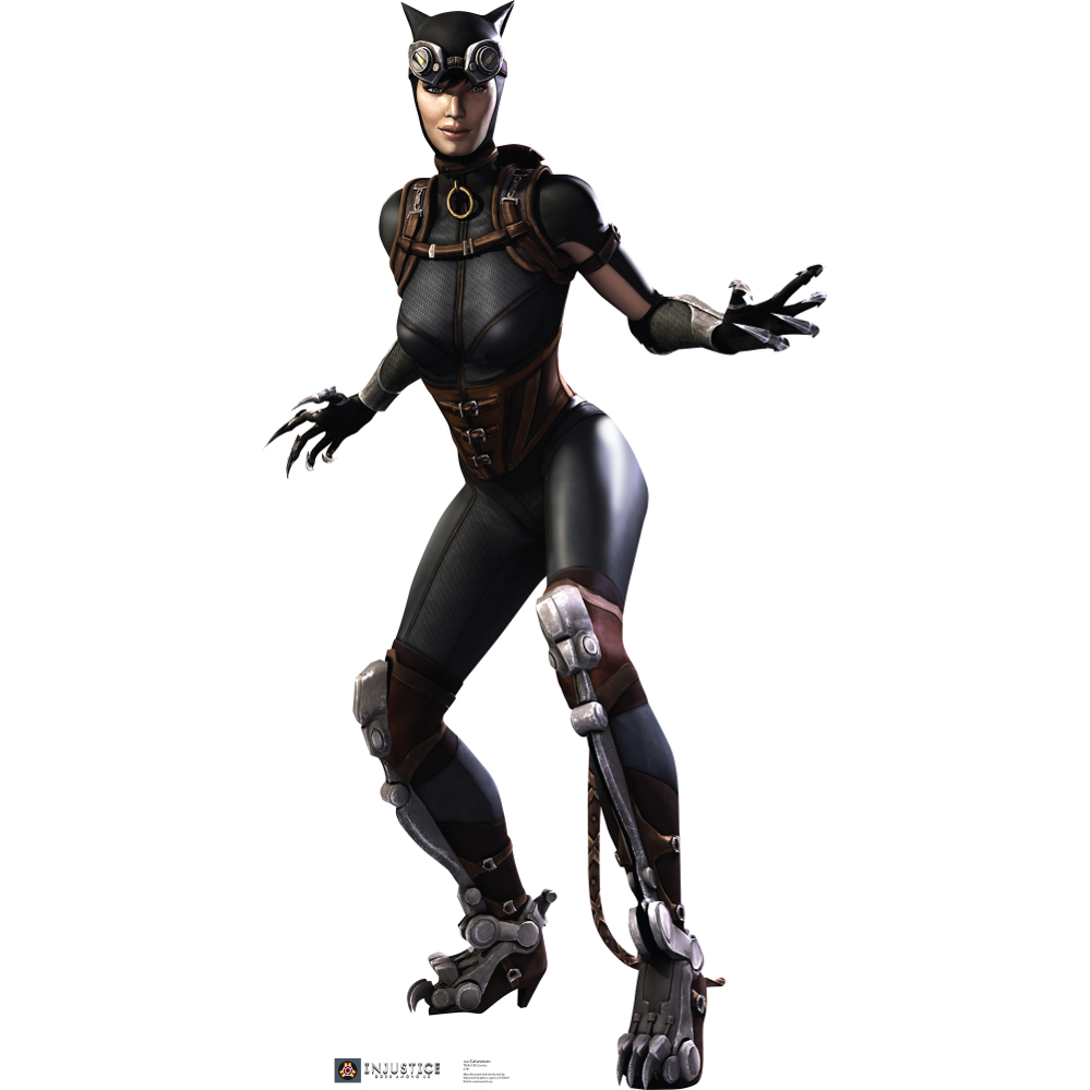 injustice gods among us catwoman standup. Black Bedroom Furniture Sets. Home Design Ideas