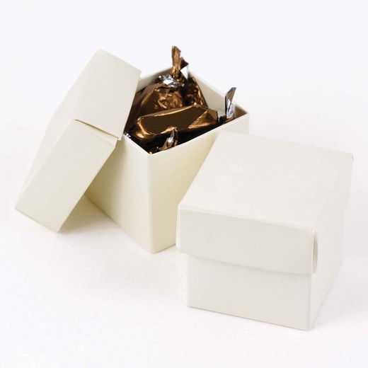 Ivory Shimmer Two Piece Favor Boxes
