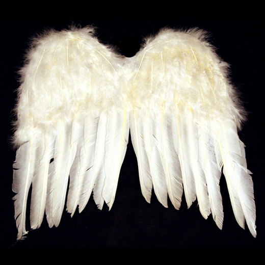 Kid's Feather Angel Wings