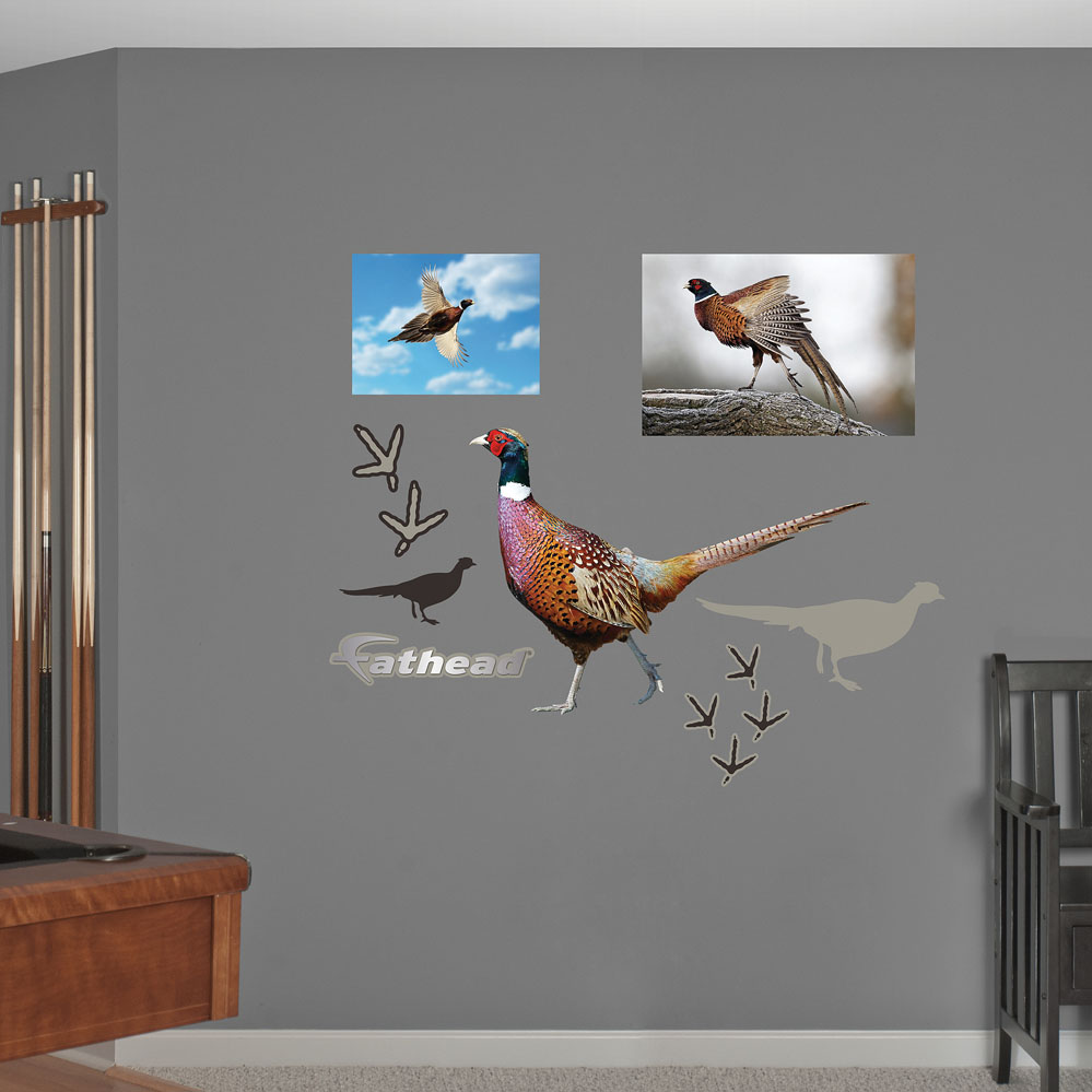 Pheasant REALBIG Wall Decal