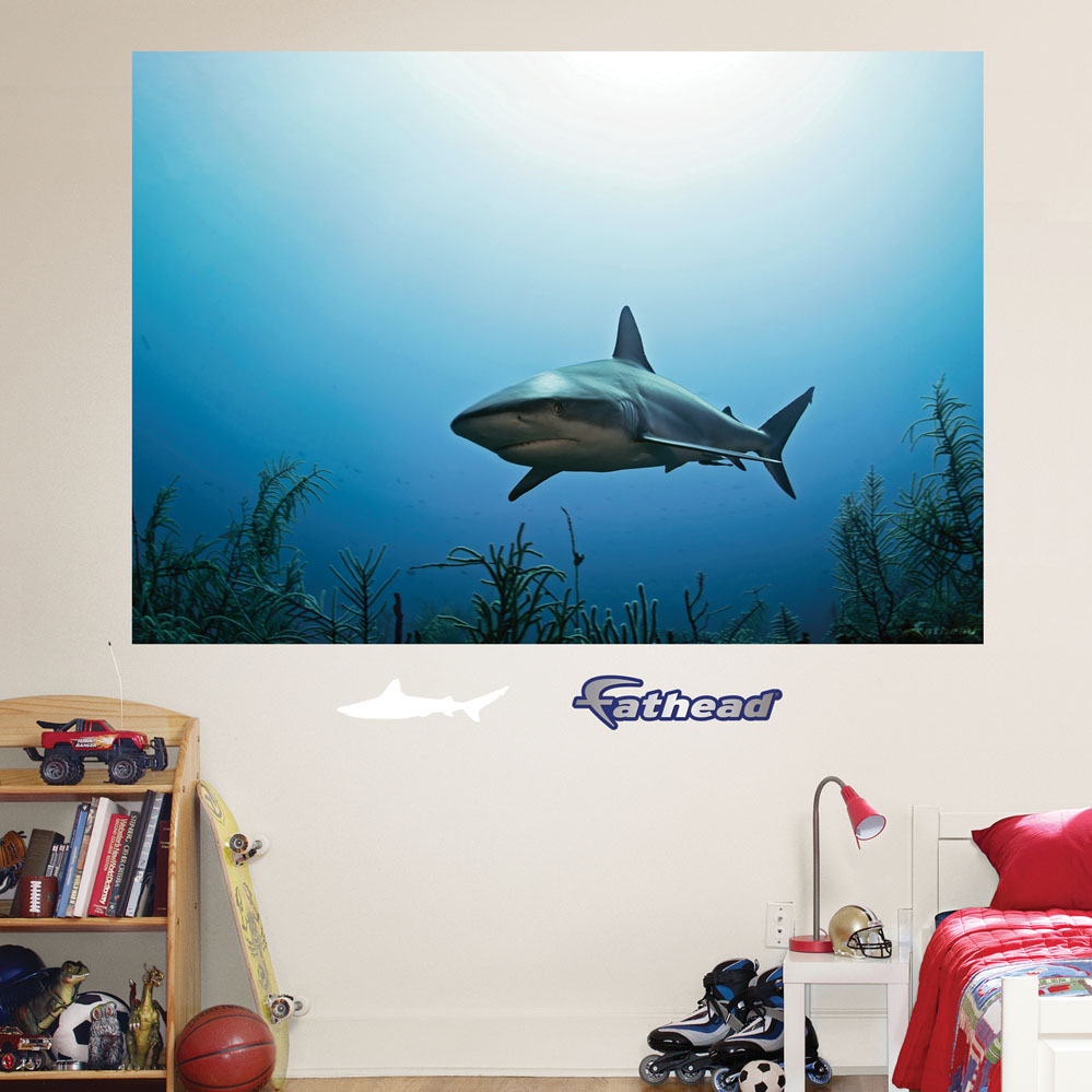 Reef Shark Mural REALBIG Wall Decal