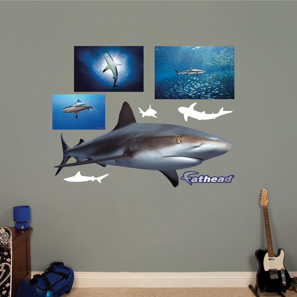 Reef Shark REALBIG Wall Decal