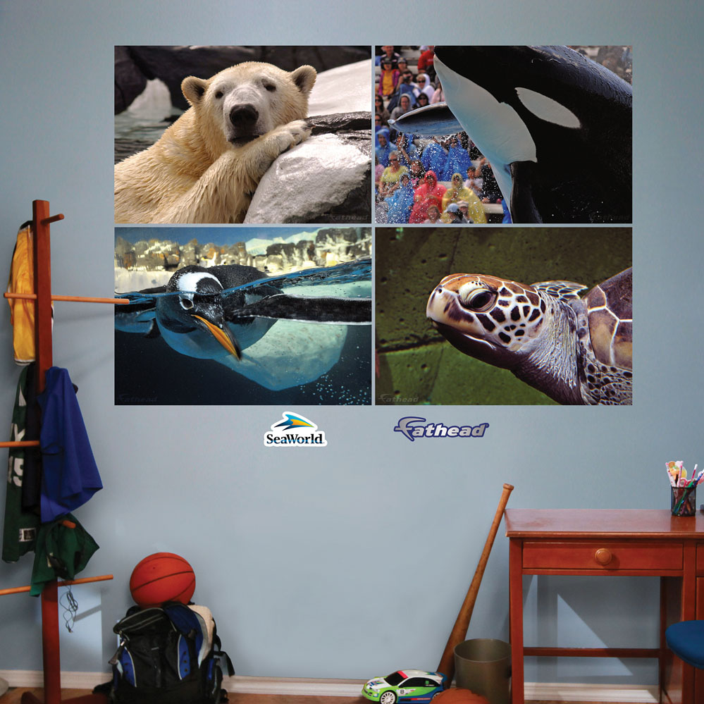 SeaWorld Close Up Murals REALBIG Wall Decal