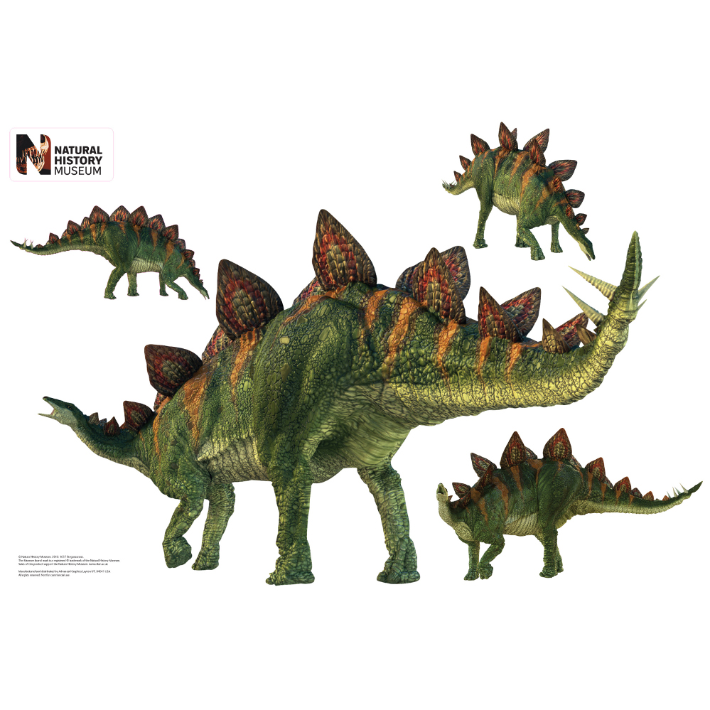 Stegosaurus Layout Wall Decor
