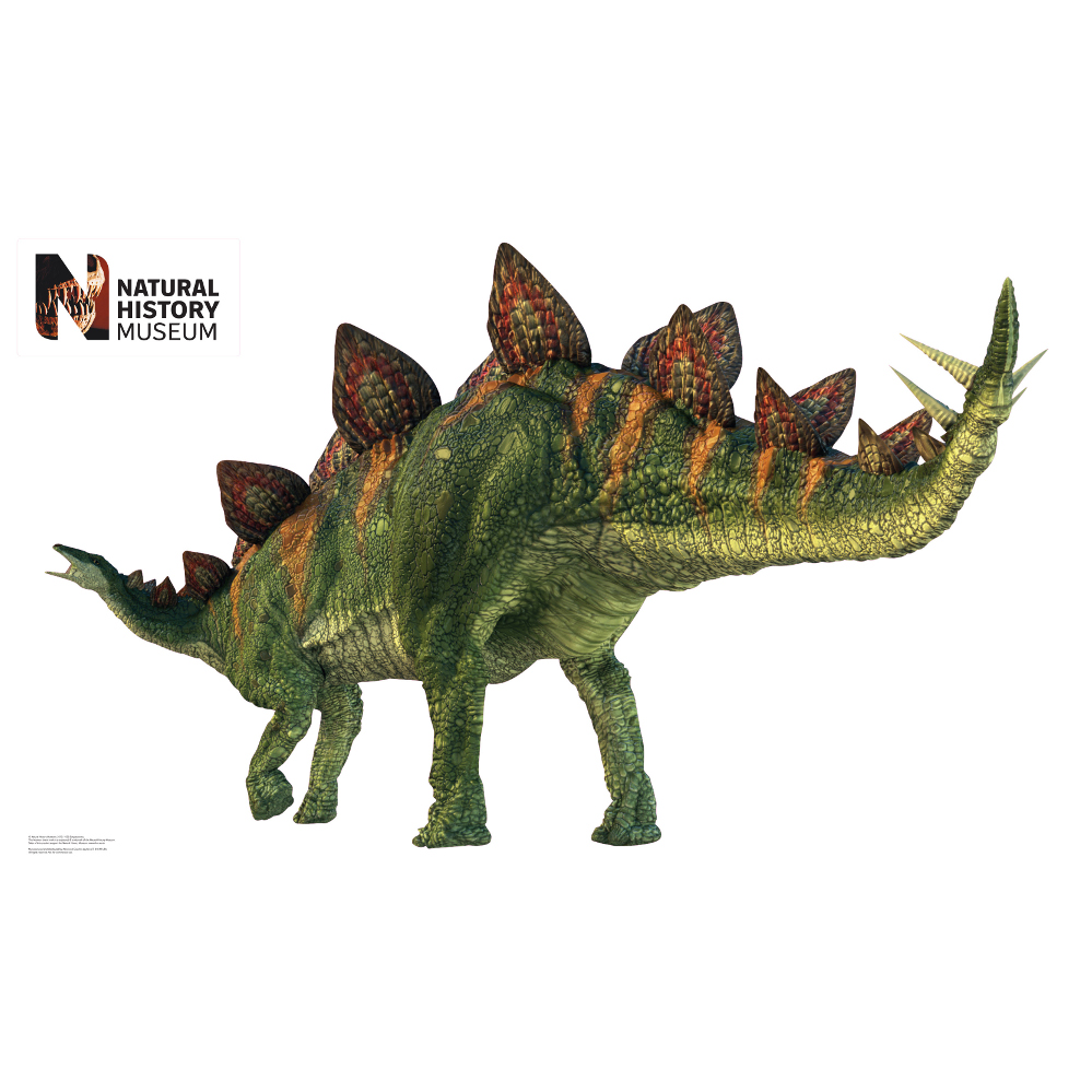 Stegosaurus Wall Decor