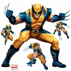 Wolverine Decorations, Favors & Party Supplies