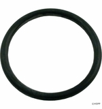 "Carvin/Jacuzzi O`Ring, 2"" Union Assy (O-370) # 47-0331-05-R"