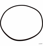 Generic O-Ring for Pentair FNS Filter Tank # O-420