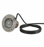 Pentair Spa Brite Incandescent Light 100W 12V 50' Cord # 78108200