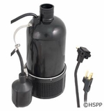 Pentair/Sta-Rite Pump Submersible Trident .75hp 115v w/Float # D175120T