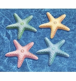 Swimline Starfish Dive Game # 91390