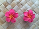 "1.5"" Inch Hawaiian Plumeria Fimo Post Earrings Sherbet Pink w/ Yellow Center"