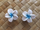 "1.5"" Inch Hawaiian Plumeria Fimo Post Earrings White w/ Blue Center"