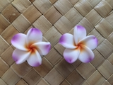 "1.5""  Inch Hawaiian Plumeria Fimo Post Earrings White w/ Purple Tips & Yellow Center"
