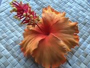 "5"" Inch Hibiscus Foam Flower Hair PICK-Orange"