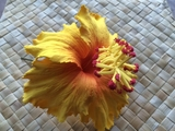 "5"" Inch Hibiscus Foam Flower Hair PICK-Yellow"