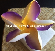"5 "" POINTED PETAL PLUMERIA FLOWER HAIR PICK Yellow w/ Purple Stripes"