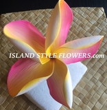 "5 "" POINTED PETAL PLUMERIA FLOWER HAIR PICK Yellow w/ Sherbet Pink Stripess"