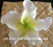 "6 "" Crinkled  Petals PLUMERIA FLOWER PICK- White w/ Green Center"