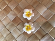 "Hawaiian Hibiscus Flower Fimo Post Earring WHITE YELLOW 0.5"" inches"