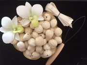 Hawaiian Kukui Lei Making KIT-Cream Color- Unpolished
