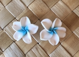 "Hawaiian Plumeria Flower Fimo Post Earring White Blue 0.75"" inches"