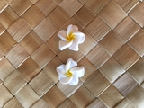 "Hawaiian Plumeria Flower Fimo  Post Earring WHITE YELLOW 0.5"" inches"