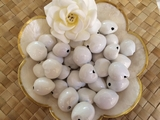 LOOSE Kukui Nuts- White   10 pcs