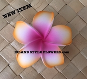 POINTED PETAL PLUMERIA- White w/ Pink Center & Orange Tips