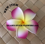 POINTED PETAL PLUMERIA- White w/ Yellow Center and Sherbet Pink Stripes