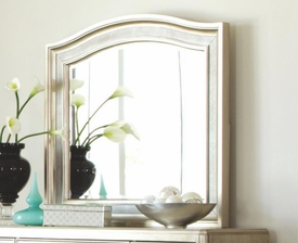 Platinum Metallic Finish Mirror