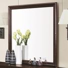 Rich Cappuccino Finish Framed Square Dresser Mirror