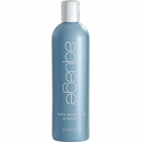 Aquage Color Protecting Shampoo - 12 oz
