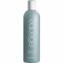 Aquage Equalizing Detangler - 12 oz