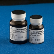 Coomassie<small><sup>&reg;</small></sup> Stains G-250 and R-250